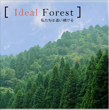 Ideal Forest 私たちは追い続ける 丹波の森の森林管理、森林施業